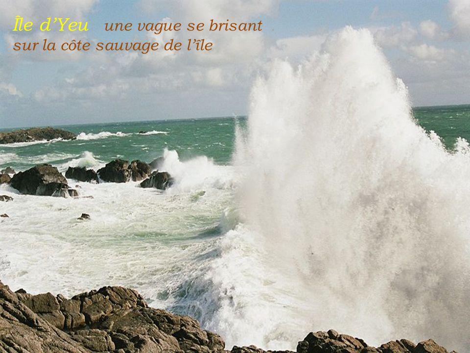 Île d'Yeu une vague se brisant . sur la côte sauvage de l'île