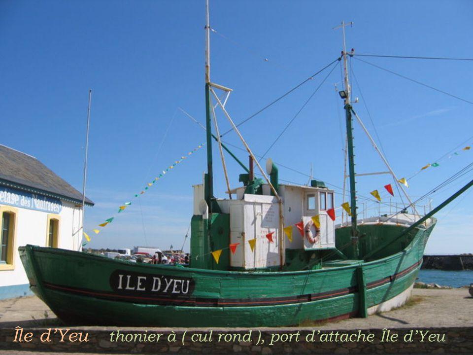 Île d'Yeu thonier à ( cul rond ), port d'attache Île d'Yeu