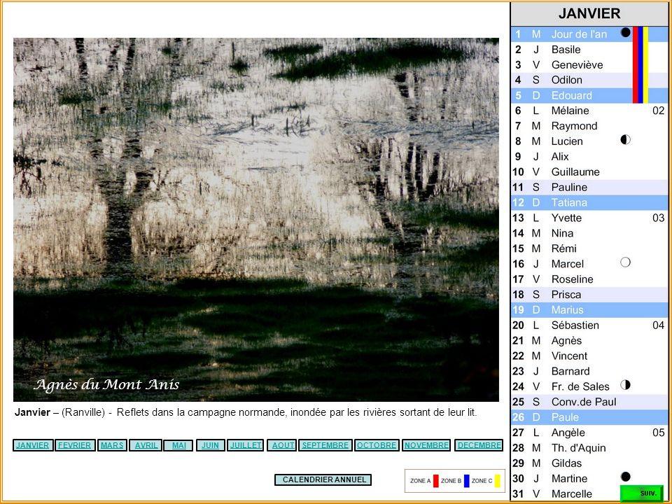Agnès du Mont Anis Janvier – (Ranville) - Reflets dans la campagne normande, inondée par les rivières sortant de leur lit.