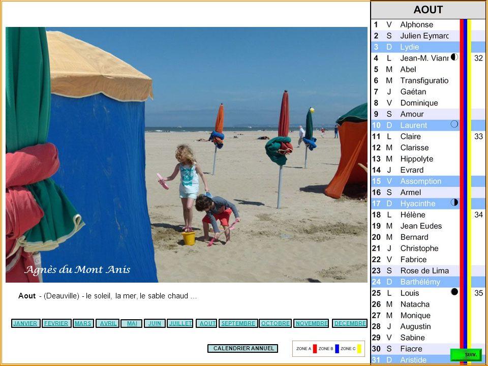 Agnès du Mont Anis Aout - (Deauville) - le soleil, la mer, le sable chaud … JANVIER. FEVRIER. MARS.