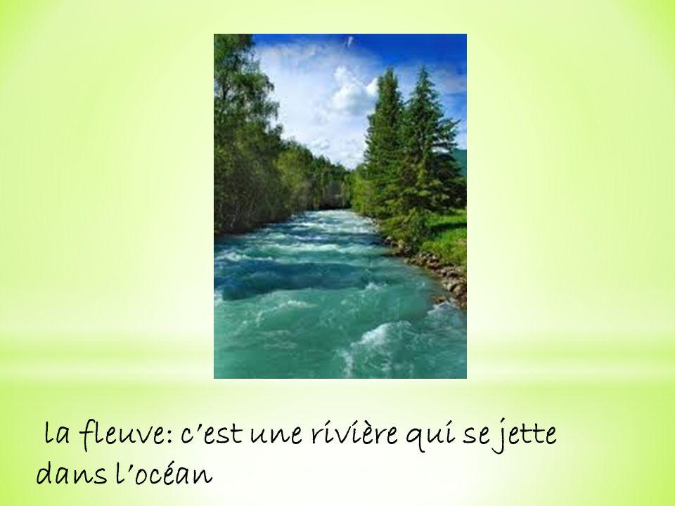 la fleuve: c'est une rivière qui se jette dans l'océan