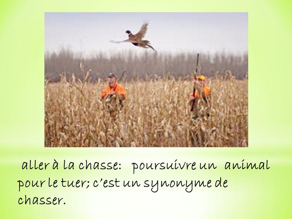 aller à la chasse: poursuivre un animal pour le tuer; c'est un synonyme de chasser.