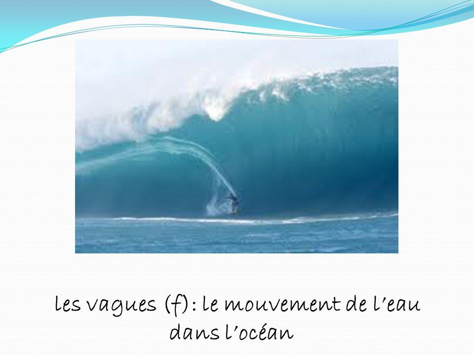 les vagues (f): le mouvement de l'eau dans l'océan