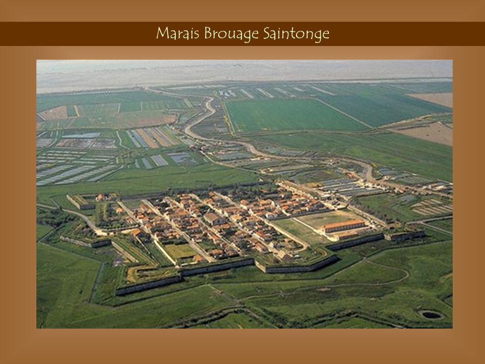 Marais Brouage Saintonge