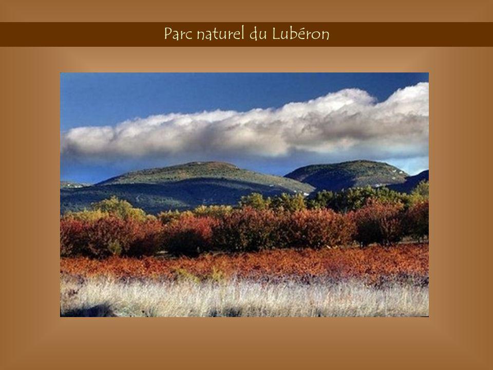 Parc naturel du Lubéron