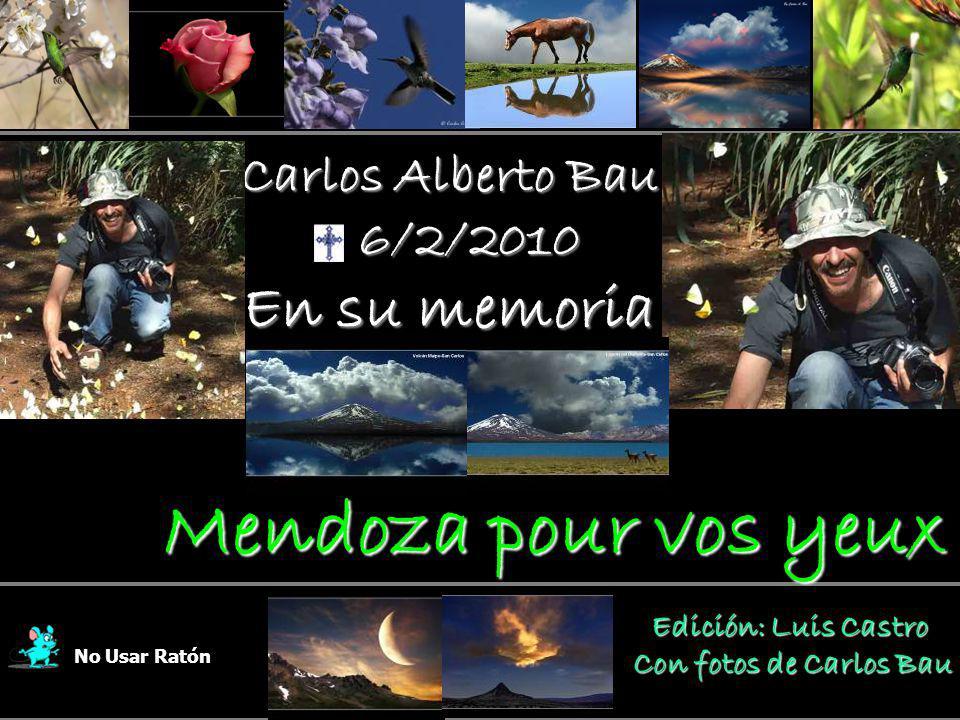 Mendoza pour vos yeux En su memoria Carlos Alberto Bau 6/2/2010