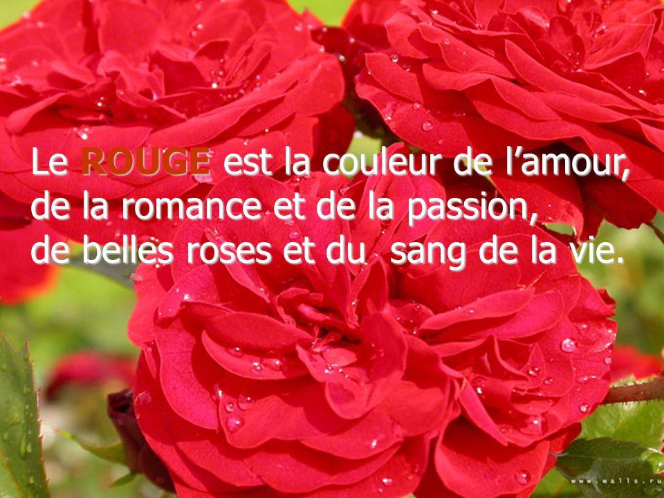 Le ROUGE est la couleur de l'amour, de la romance et de la passion, de belles roses et du sang de la vie.
