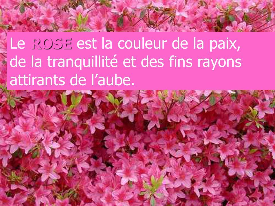Le ROSE est la couleur de la paix, de la tranquillité et des fins rayons attirants de l'aube.