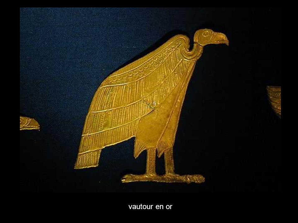vautour en or