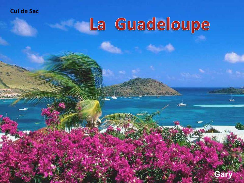 Cul de Sac La Guadeloupe Gary