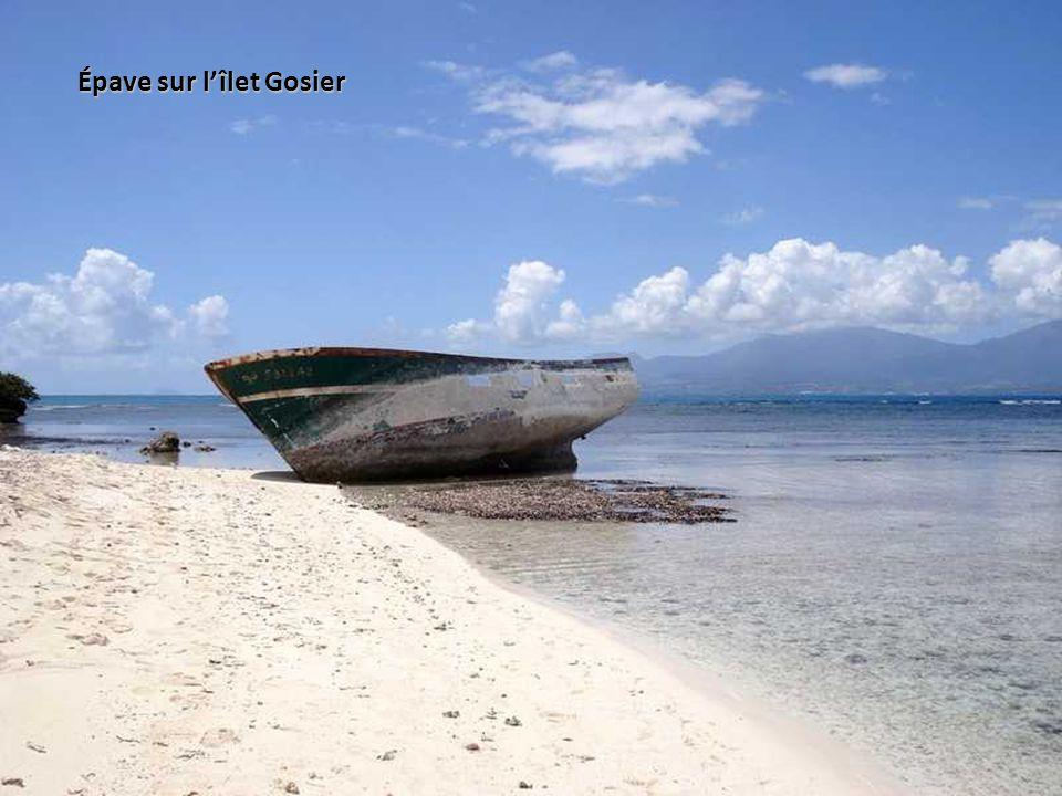 Épave sur l'îlet Gosier