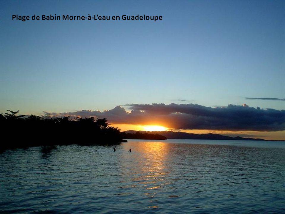 Plage de Babin Morne-à-L'eau en Guadeloupe