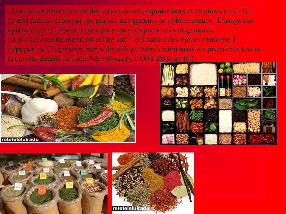 Les épices proviennent des pays chauds, équatoriaux et tropicaux où elle furent découvertes par les grands navigateurs et colonisateurs .