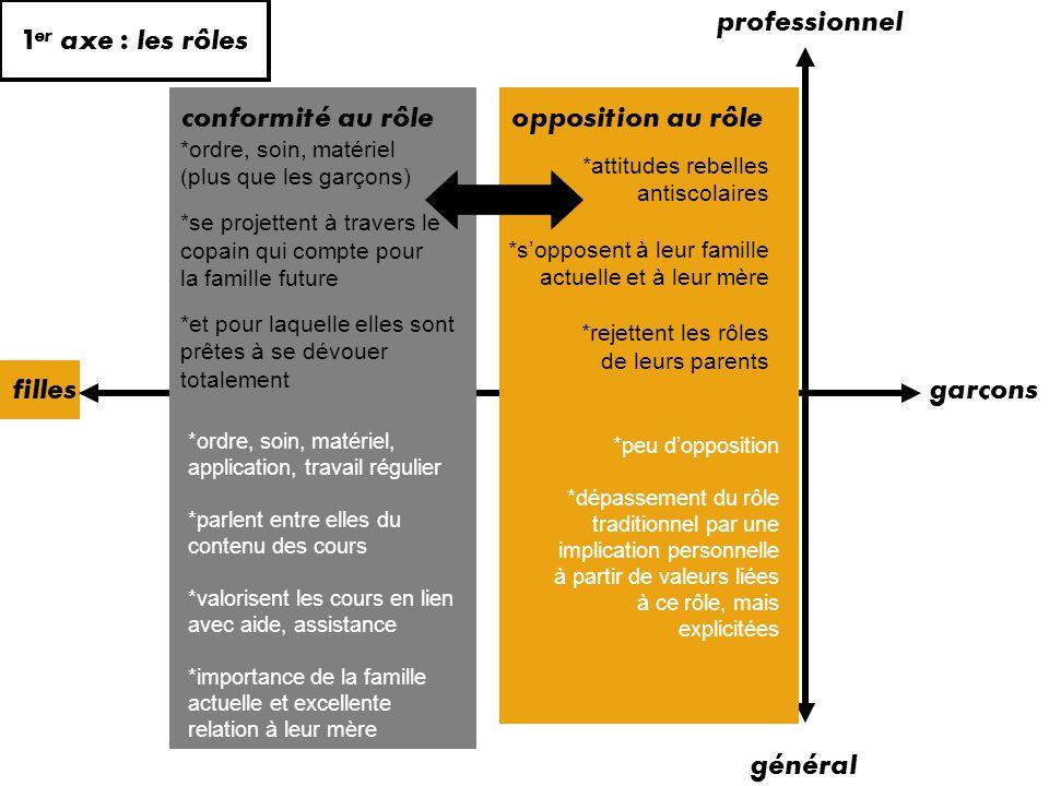 1er axe : les rôles professionnel conformité au rôle