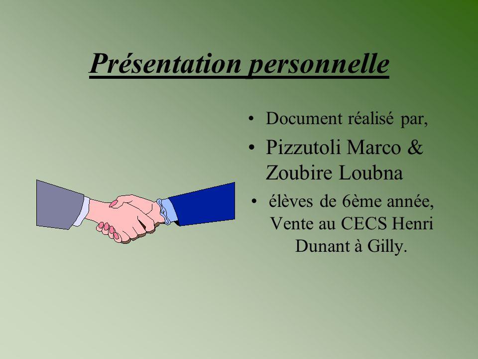 Présentation personnelle