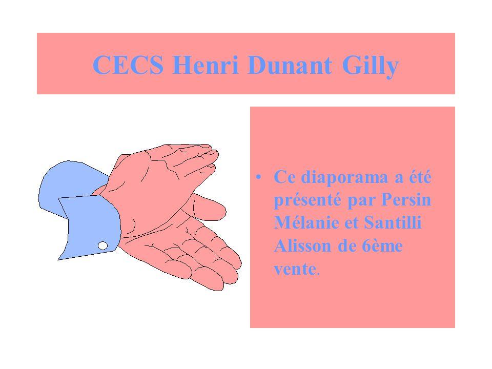 CECS Henri Dunant Gilly