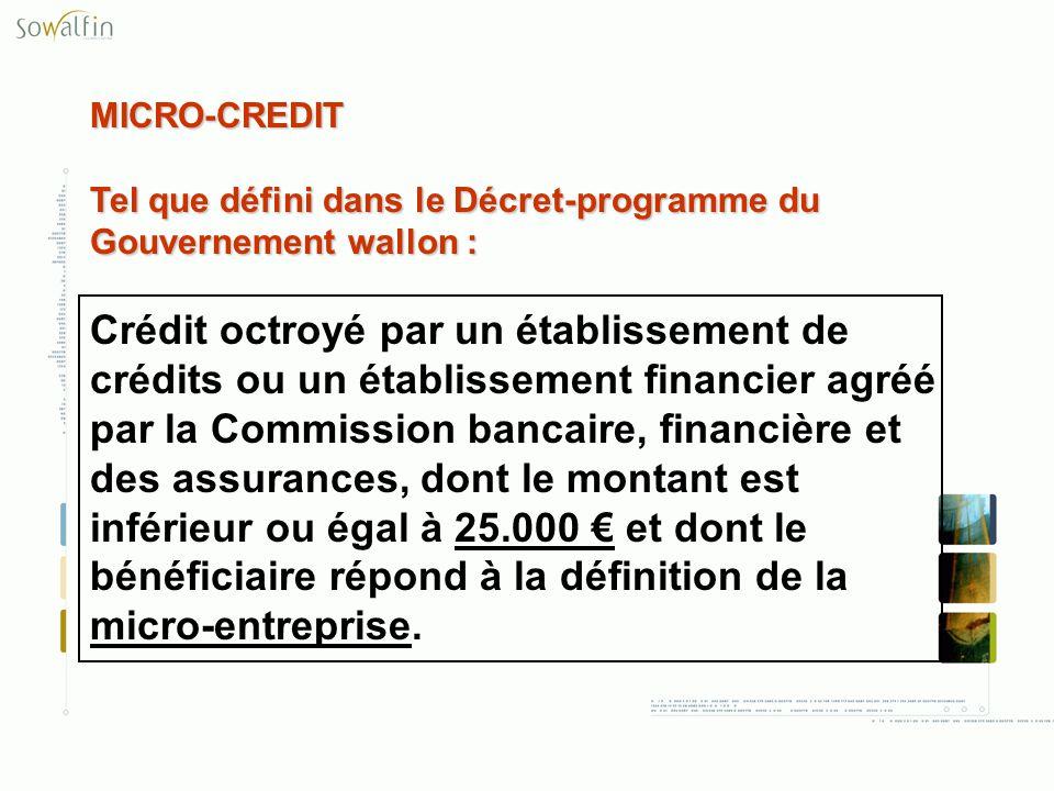 MICRO-CREDIT Tel que défini dans le Décret-programme du Gouvernement wallon :