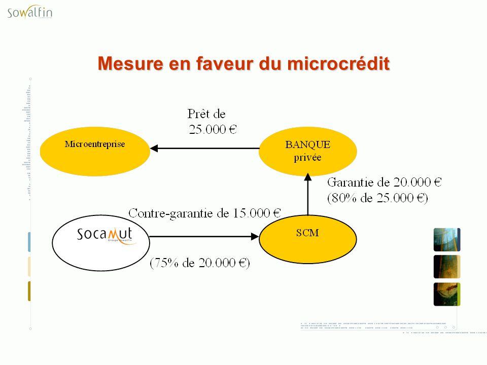 Mesure en faveur du microcrédit