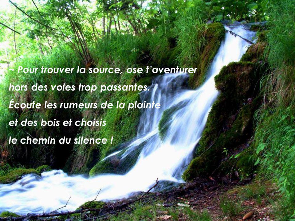 ~ Pour trouver la source, ose t'aventurer