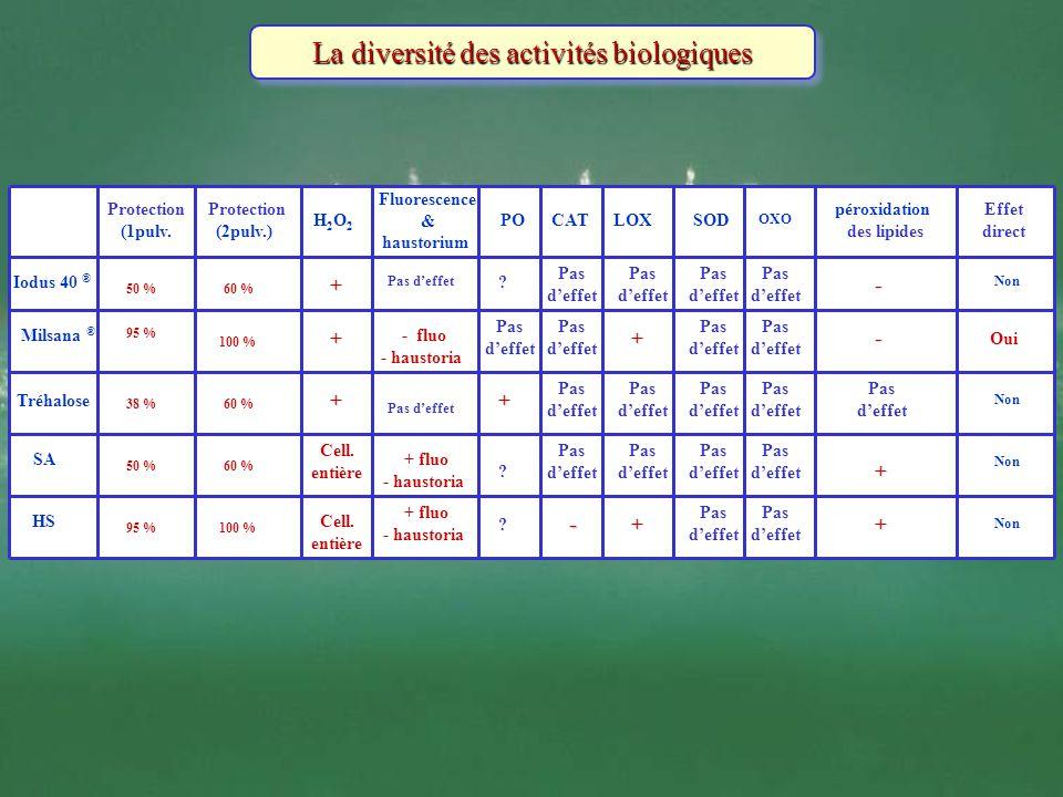 La diversité des activités biologiques