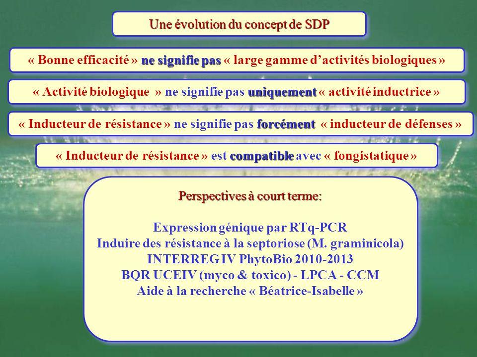 Une évolution du concept de SDP