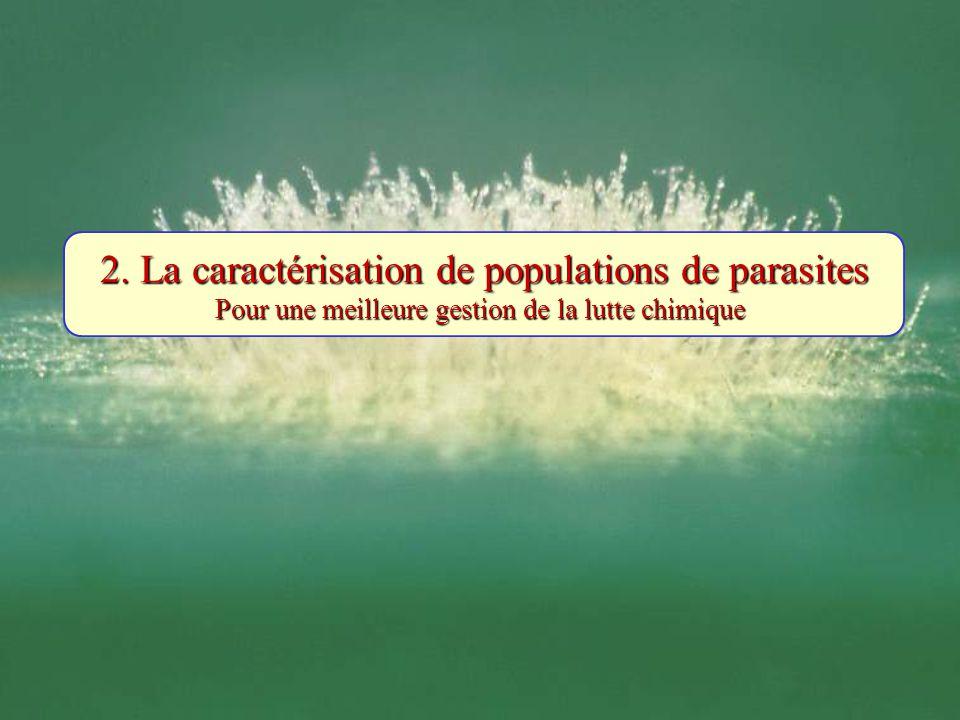 2. La caractérisation de populations de parasites