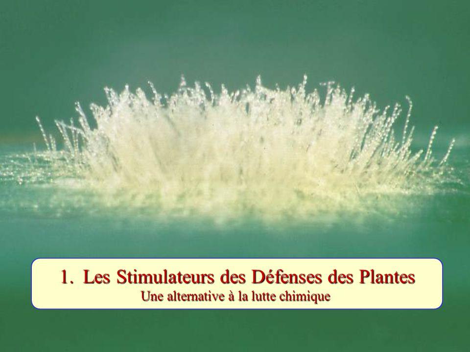 Les Stimulateurs des Défenses des Plantes