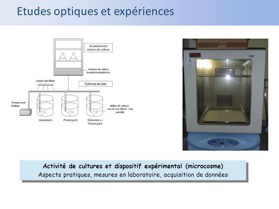 Activité de cultures et dispositif expérimental (microcosme)