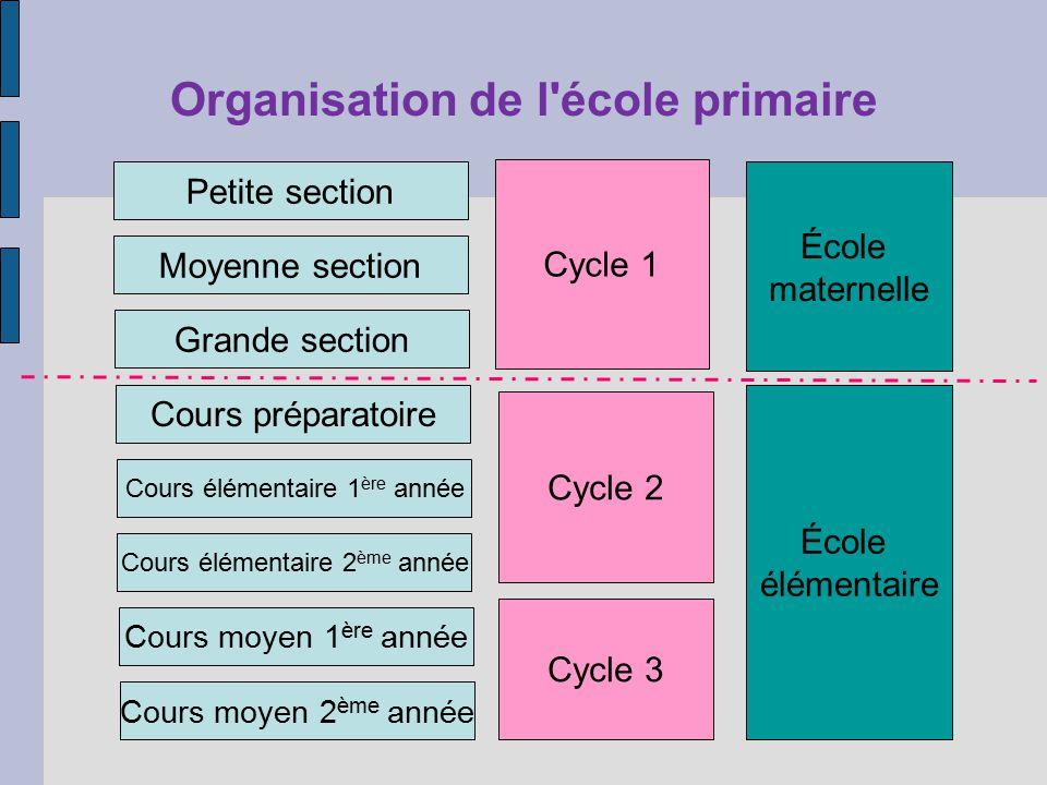 Organisation de l école primaire