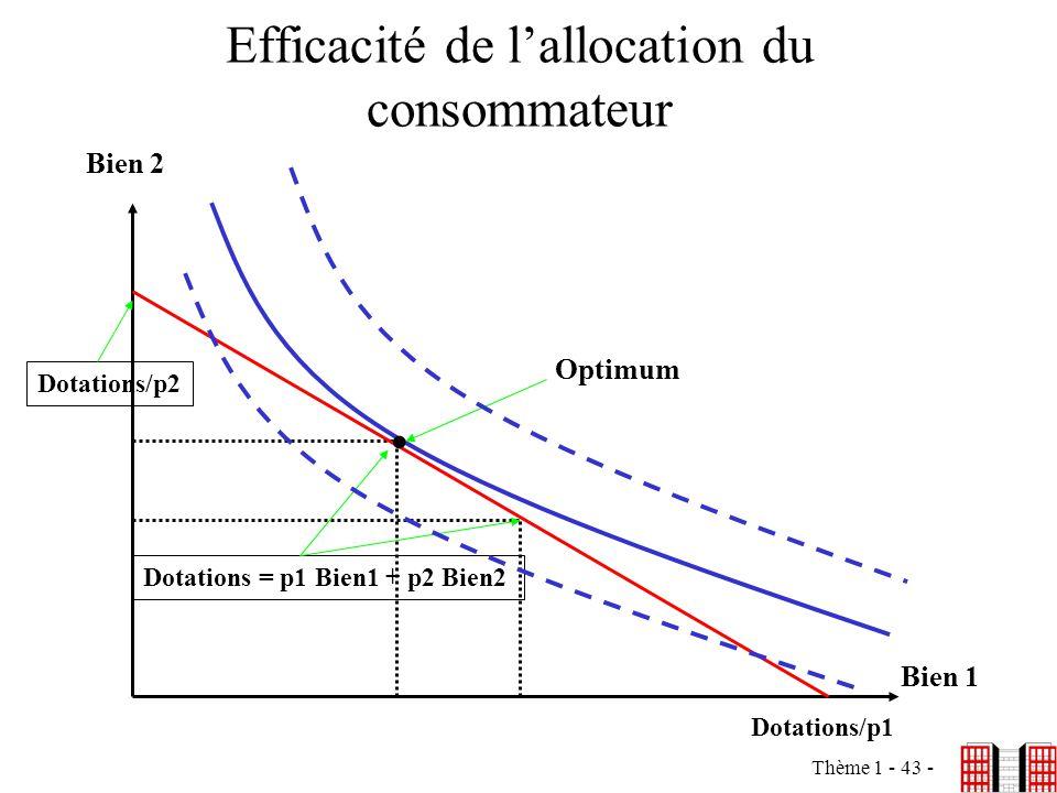 Efficacité de l'allocation du consommateur