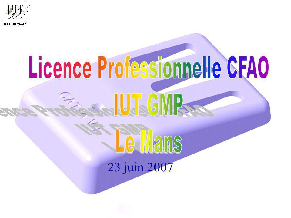 Licence Professionnelle CFAO