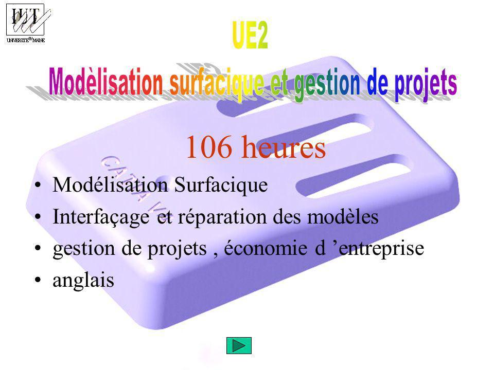 Modèlisation surfacique et gestion de projets