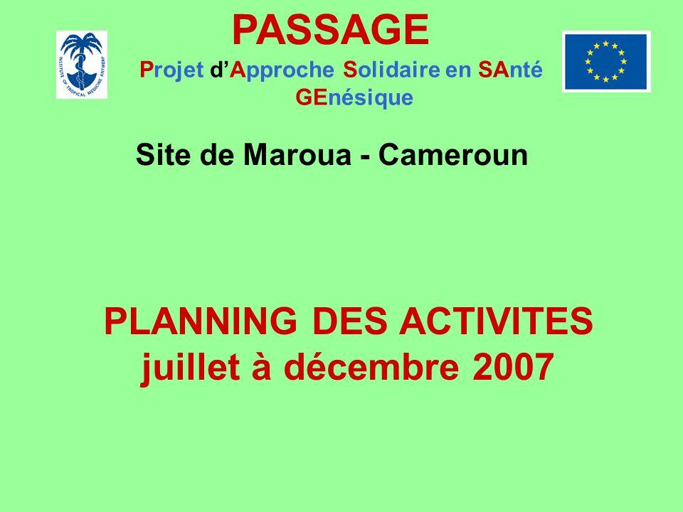PASSAGE PLANNING DES ACTIVITES juillet à décembre 2007
