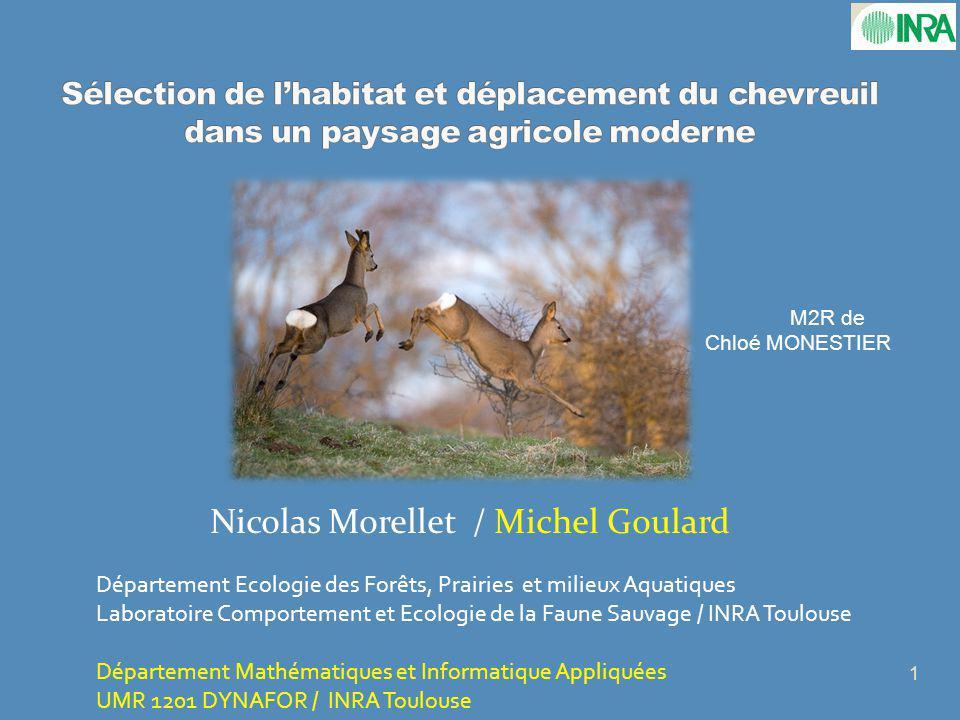 Nicolas Morellet / Michel Goulard