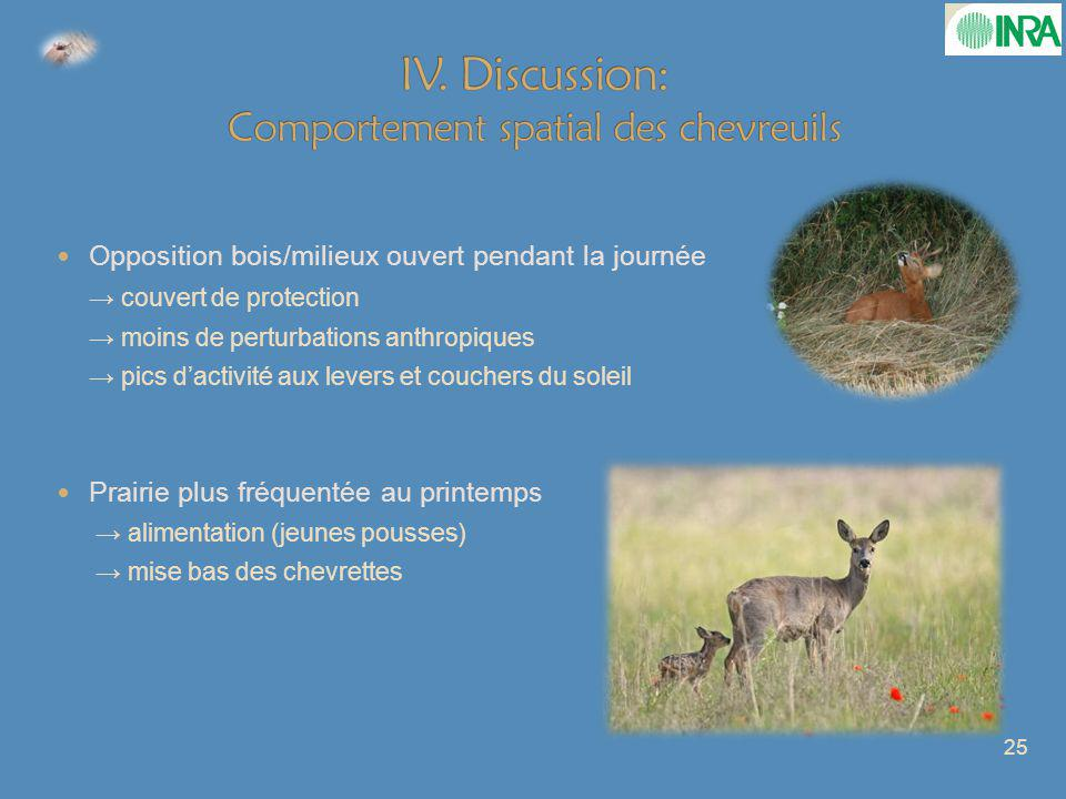 IV. Discussion: Comportement spatial des chevreuils