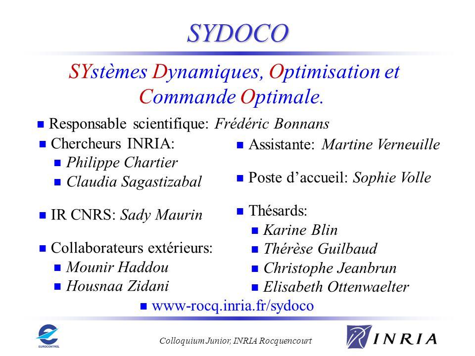 SYstèmes Dynamiques, Optimisation et Commande Optimale.