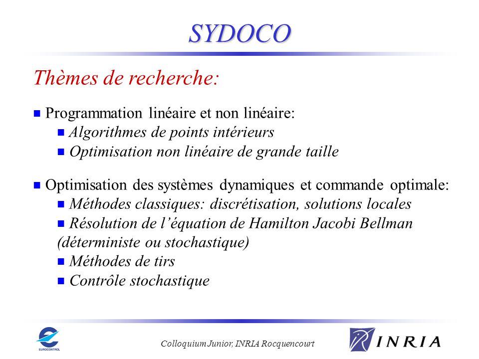 SYDOCO Thèmes de recherche: Programmation linéaire et non linéaire: