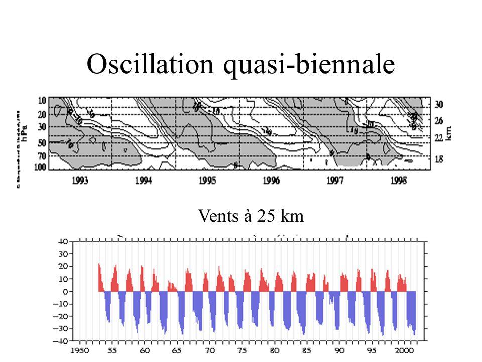 Oscillation quasi-biennale