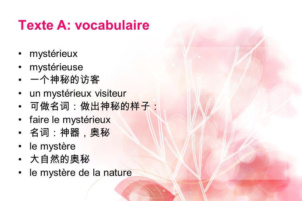 Texte A: vocabulaire mystérieux mystérieuse 一个神秘的访客