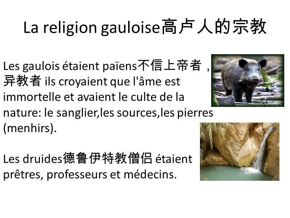 La religion gauloise高卢人的宗教