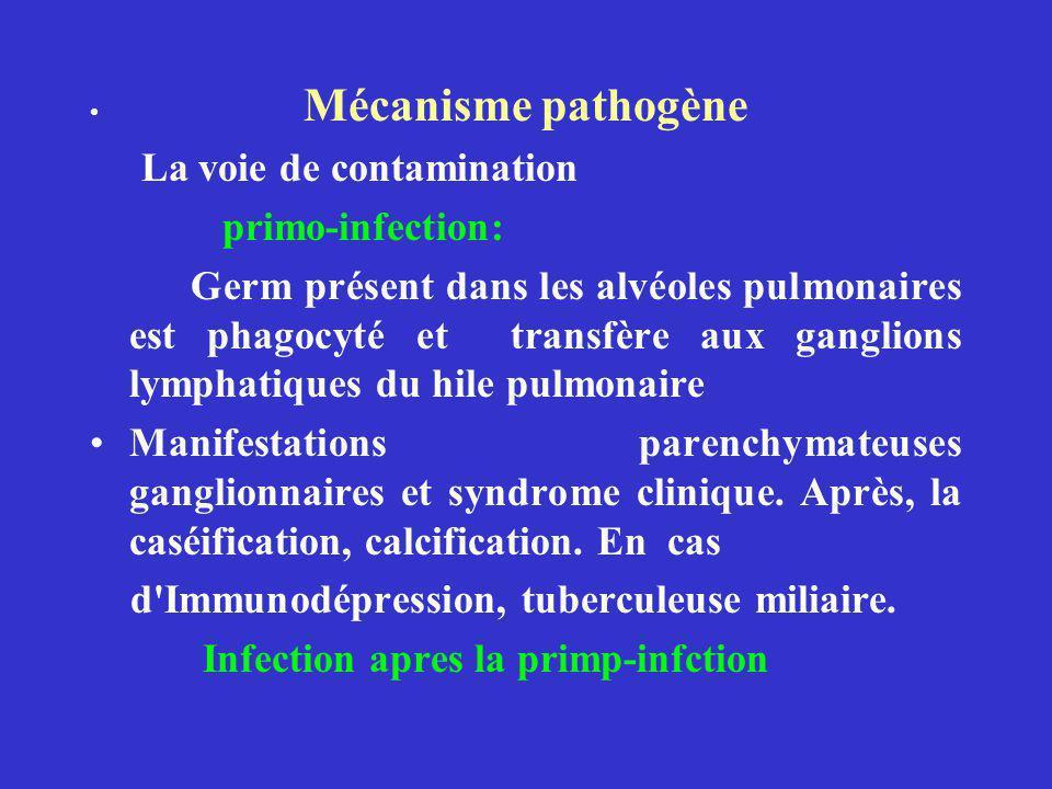 La voie de contamination primo-infection: