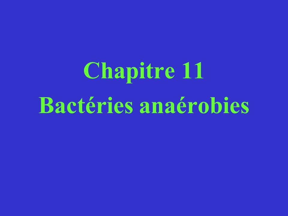 Chapitre 11 Bactéries anaérobies