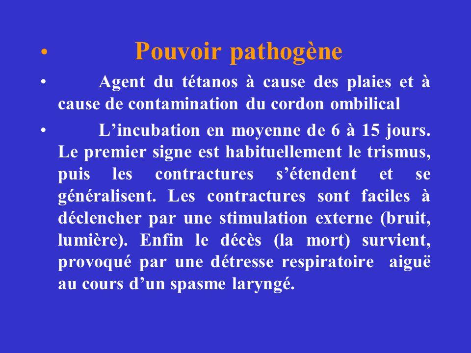 Pouvoir pathogène Agent du tétanos à cause des plaies et à cause de contamination du cordon ombilical.