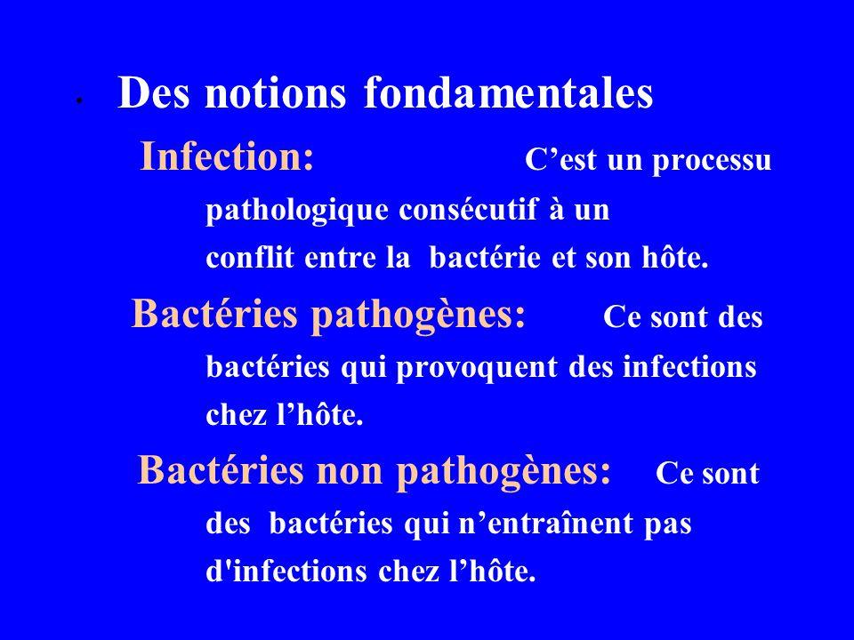 Bactéries non pathogènes: Ce sont
