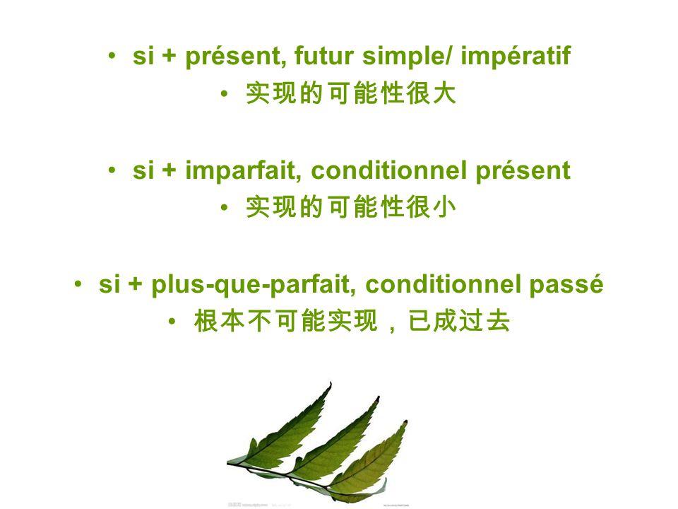 si + présent, futur simple/ impératif 实现的可能性很大