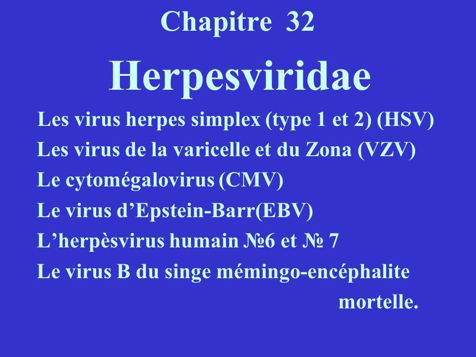 Chapitre 32 Les virus de la varicelle et du Zona (VZV)