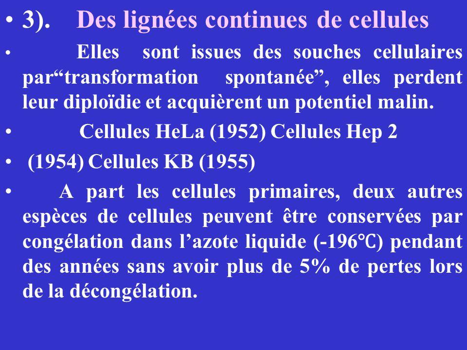 3). Des lignées continues de cellules