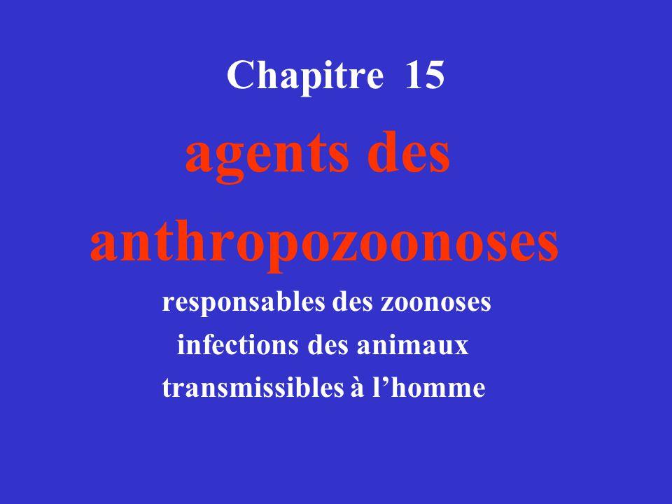 anthropozoonoses agents des Chapitre 15 infections des animaux