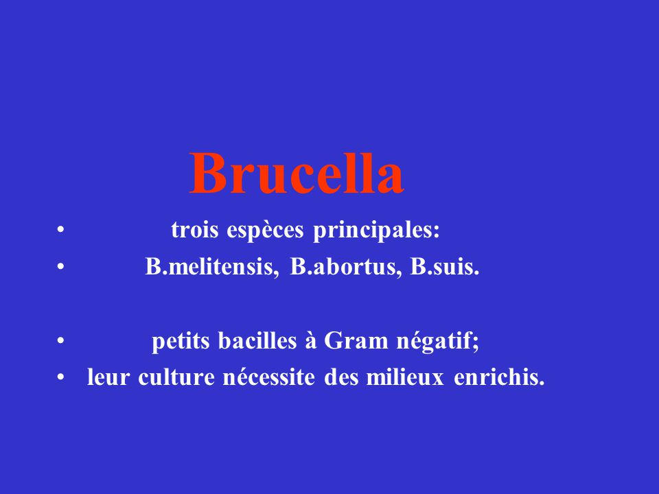 Brucella trois espèces principales: B.melitensis, B.abortus, B.suis.