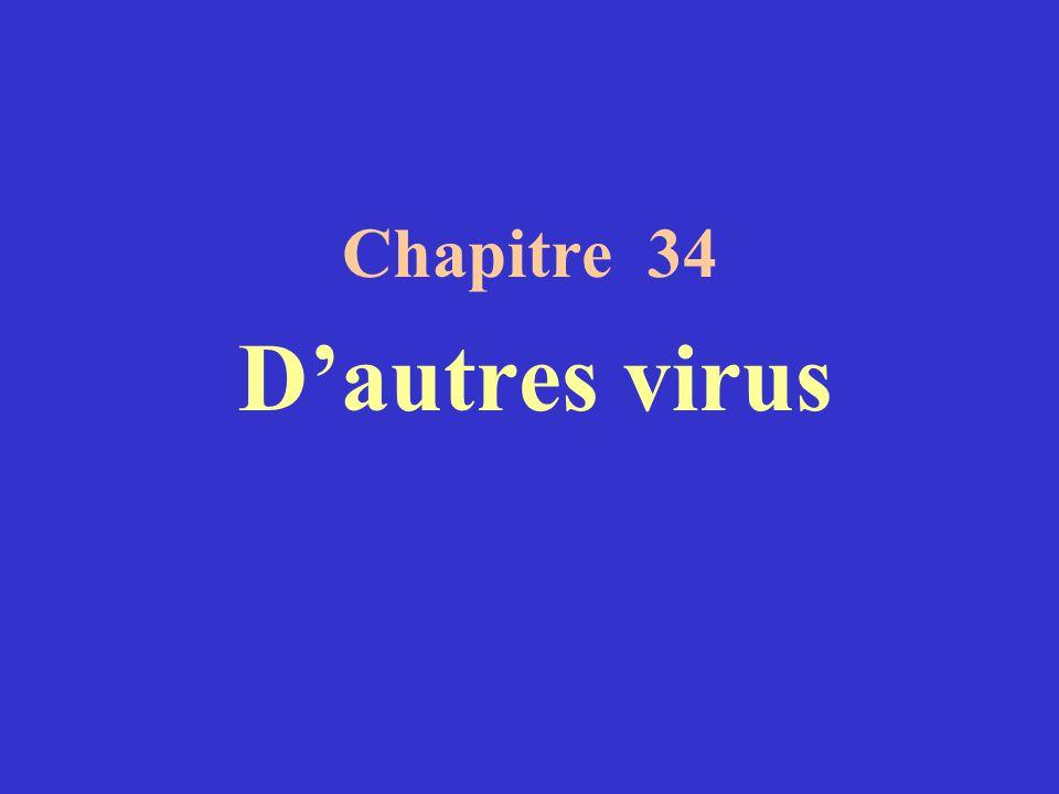 Chapitre 34 D'autres virus